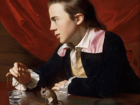 John Singleton Copley, A Boy with a Flying Squirrel (Henry Pelham), 1765
