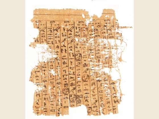 4x3_papyrus.jpg?itok=J6-BhIqV