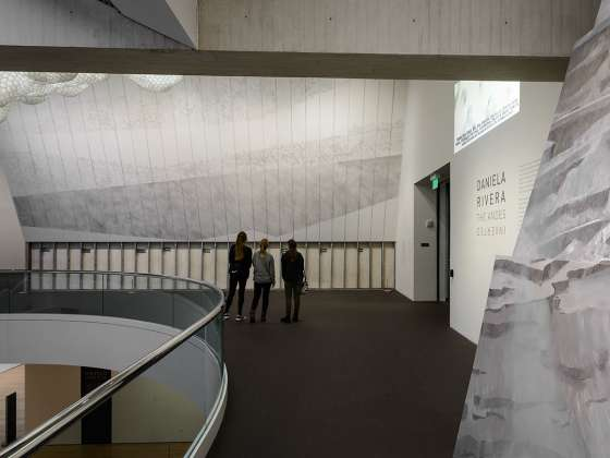 "Photograph of ""Andes Inverted"" installation in the gallery"