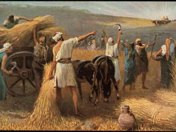 Image result for ark beth shemesh