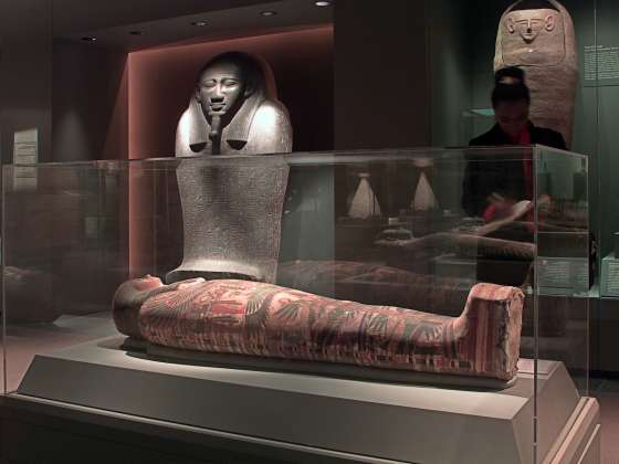 A variety of mummies on display in gallery