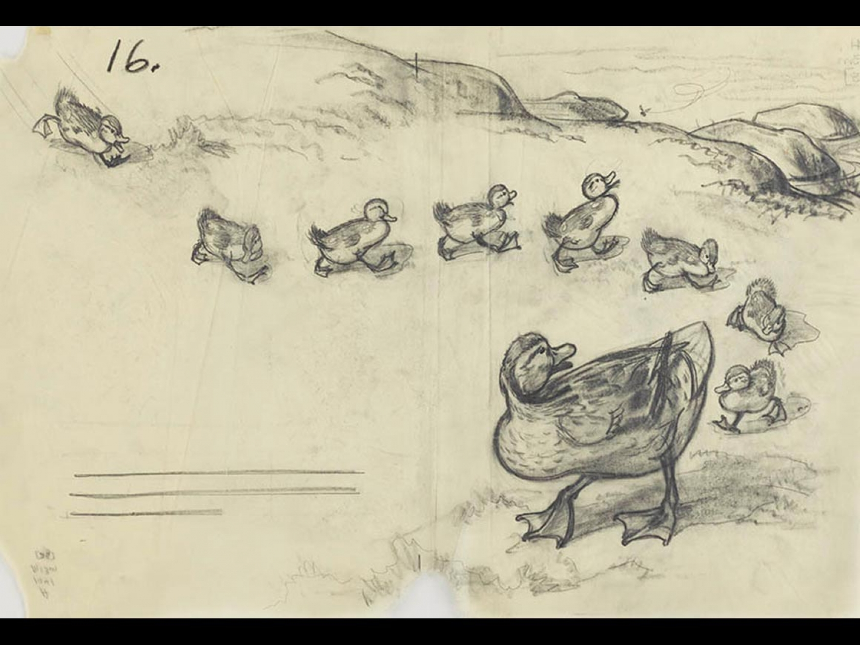 """Robert McCloskey's drawing for Make Way for Ducklings (""""She taught them to walk in a line, to come when they were called, and to keep a safe distance from bikes and scooters and other things with wheels,"""")"""