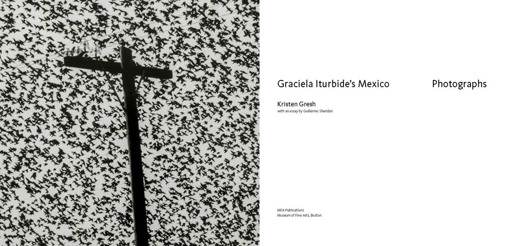 Title page of Graciela Iturbide's Mexico. Photo of flock of birds in the sky on left.